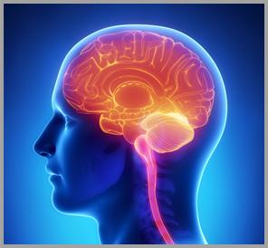 Erectile Dysfunction Causes - Concierge Men's Wellness